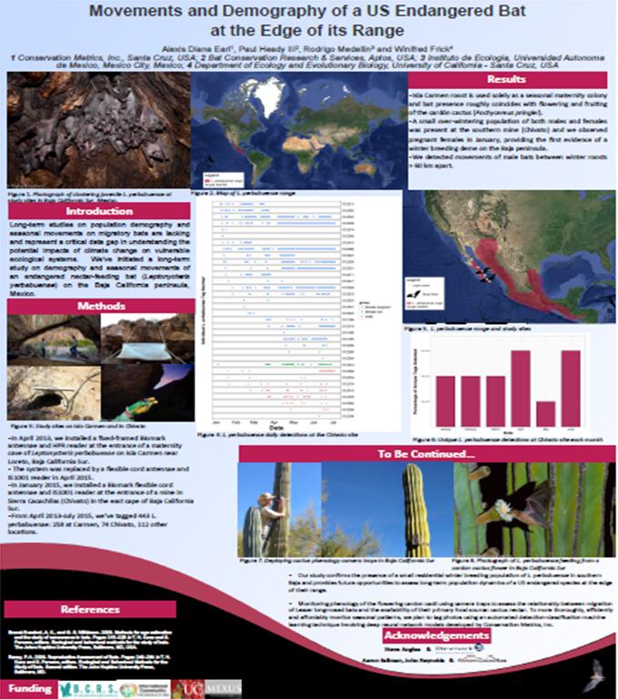 estudio-murcielagos-demografia-movimientos-baja-california-sur