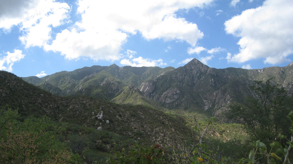 las-cruces-hike