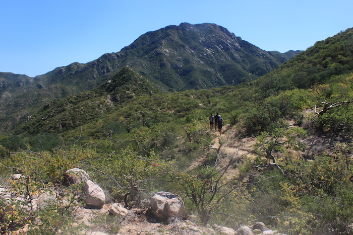 baja-hiking-mexico.JPG