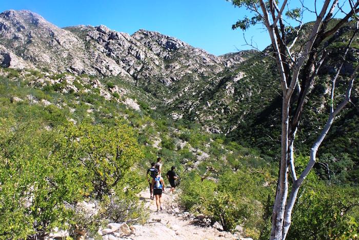 hiking-trail-mexico.JPG