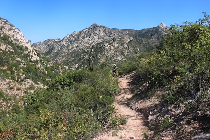 trail-hiking-baja.JPG