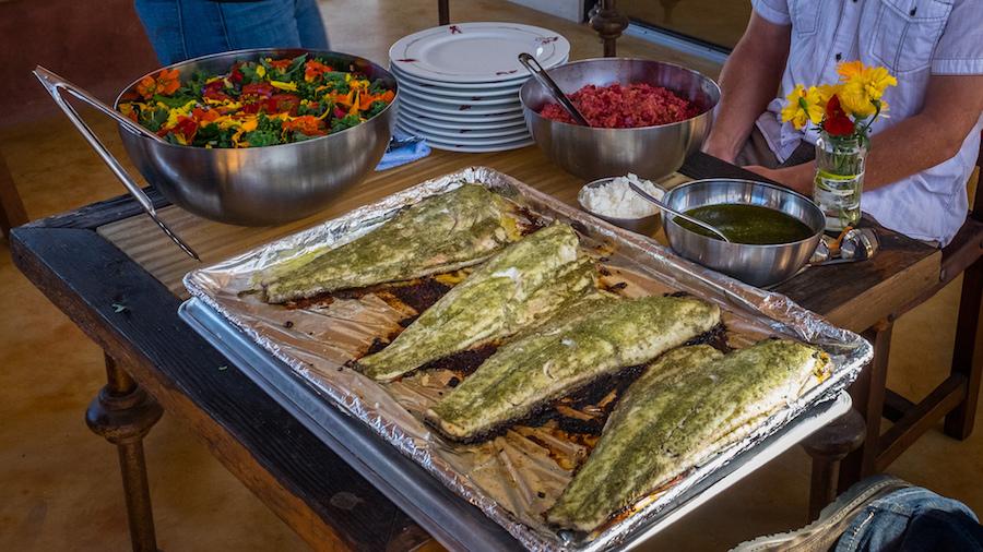Farm & Sea to Table Preparations