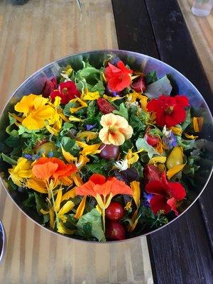 salad+(1).jpg