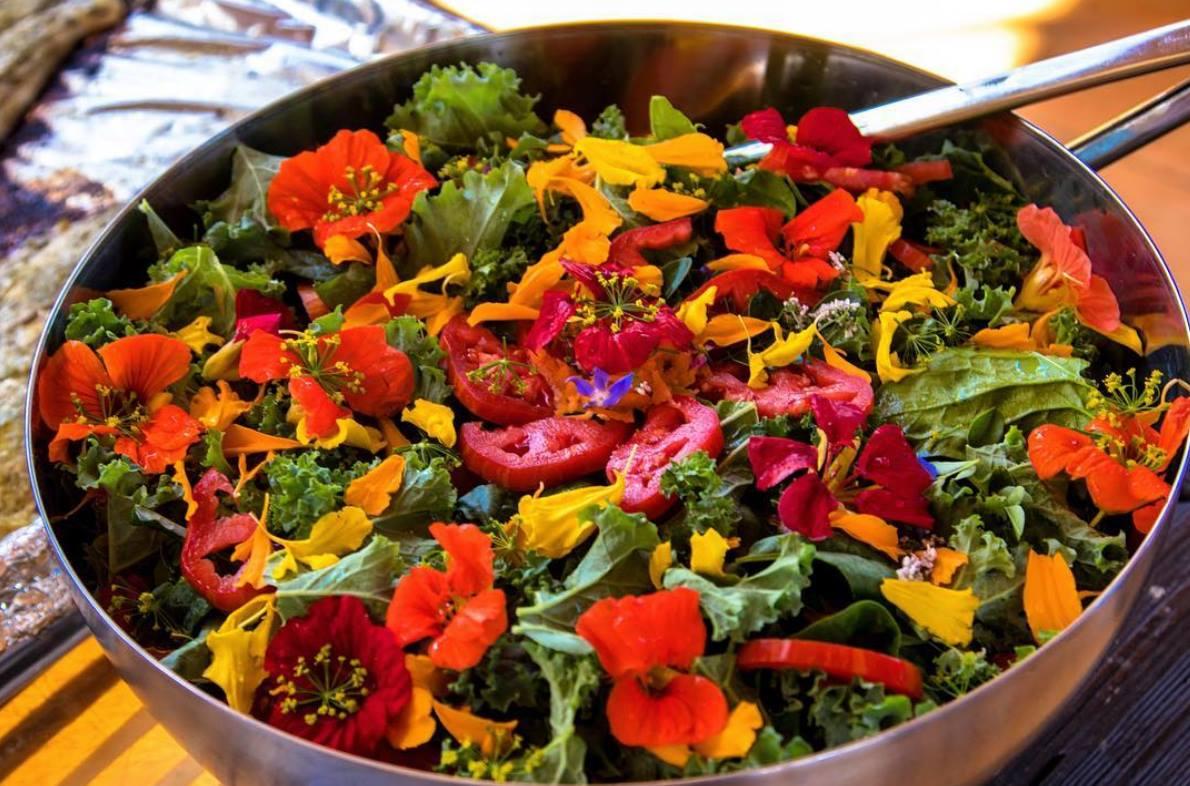 Organic-Salad (1).jpg