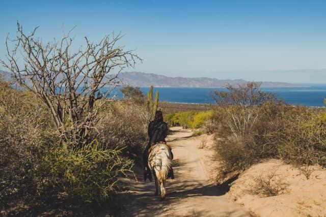 THE DESERT OASIS - RANCH GETAWAY
