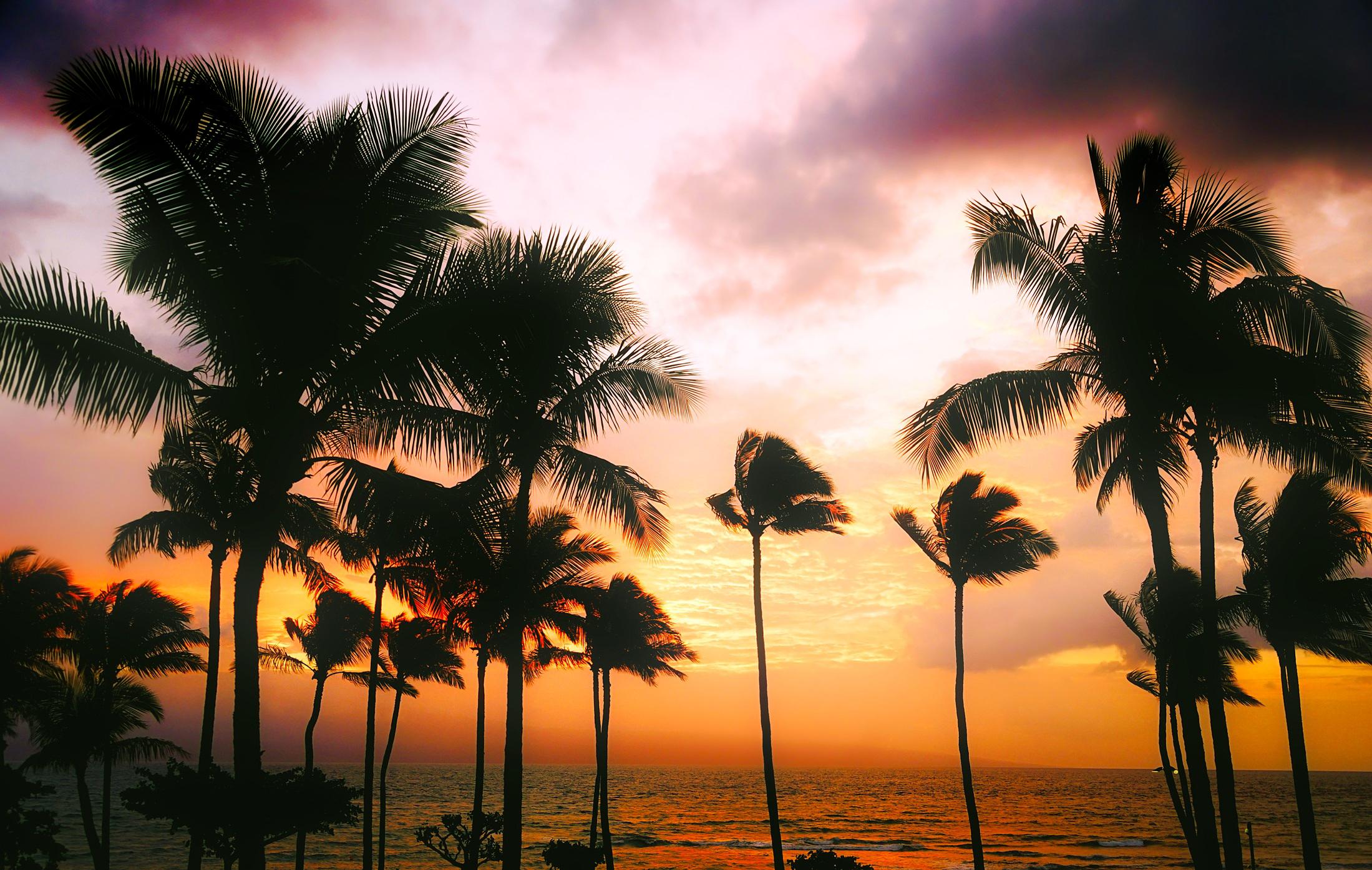 hawaii-1945486.jpg