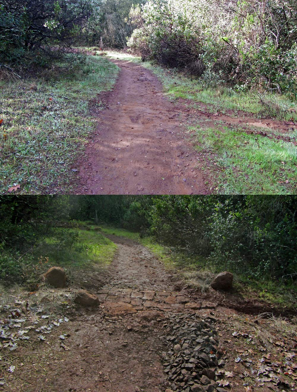 Before_After-1376w.jpg