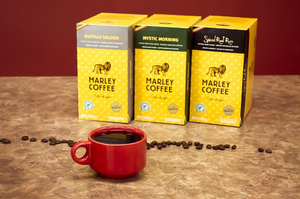 marley-coffee-edmonton-4