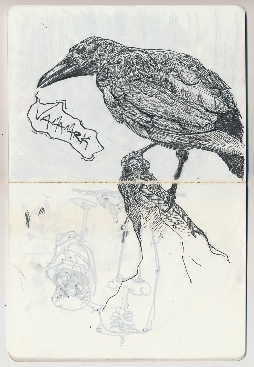 ms003sq-crow.jpg