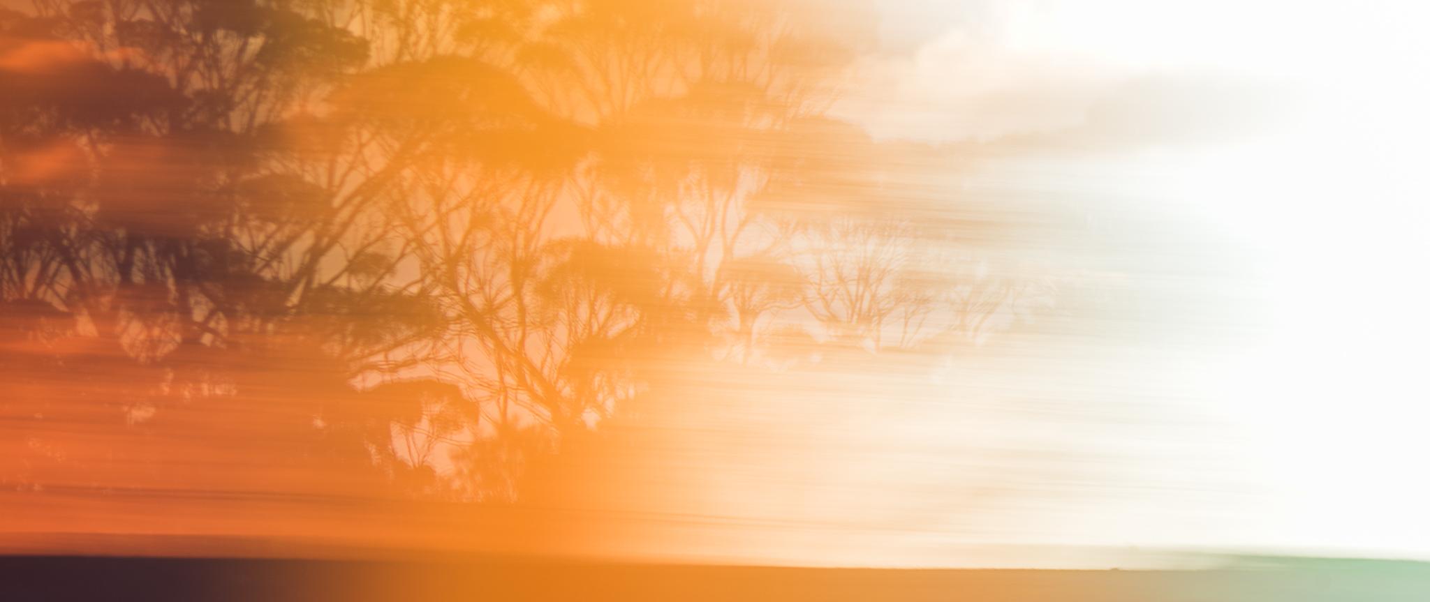 Landscape - Daniel Purvis - DSC_8805.jpg
