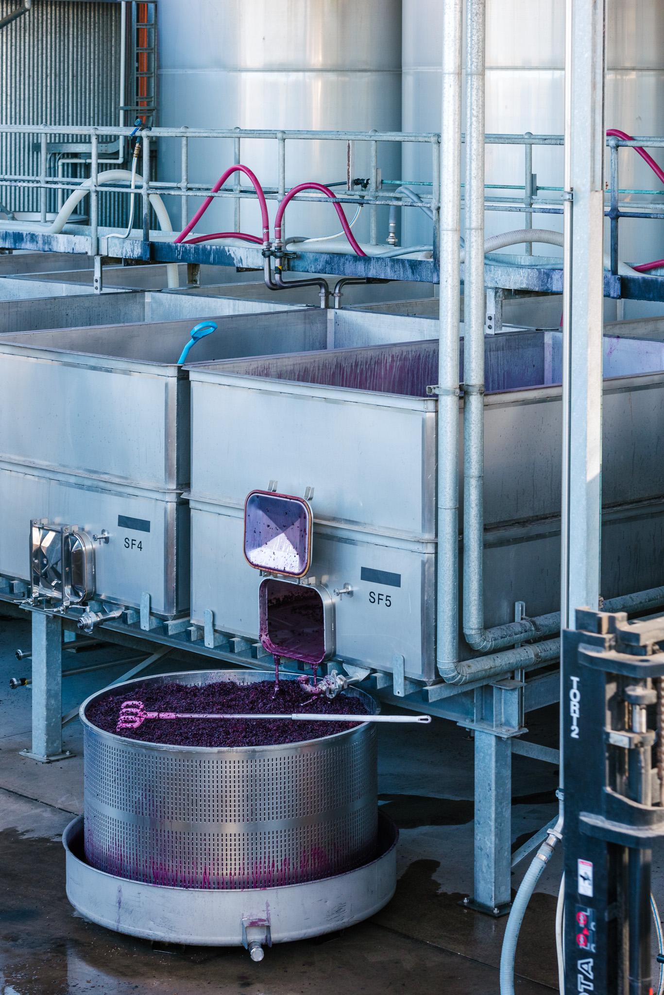 Whistler Wines Vintage 2018 - Daniel Purvis - _DSC5294.jpg