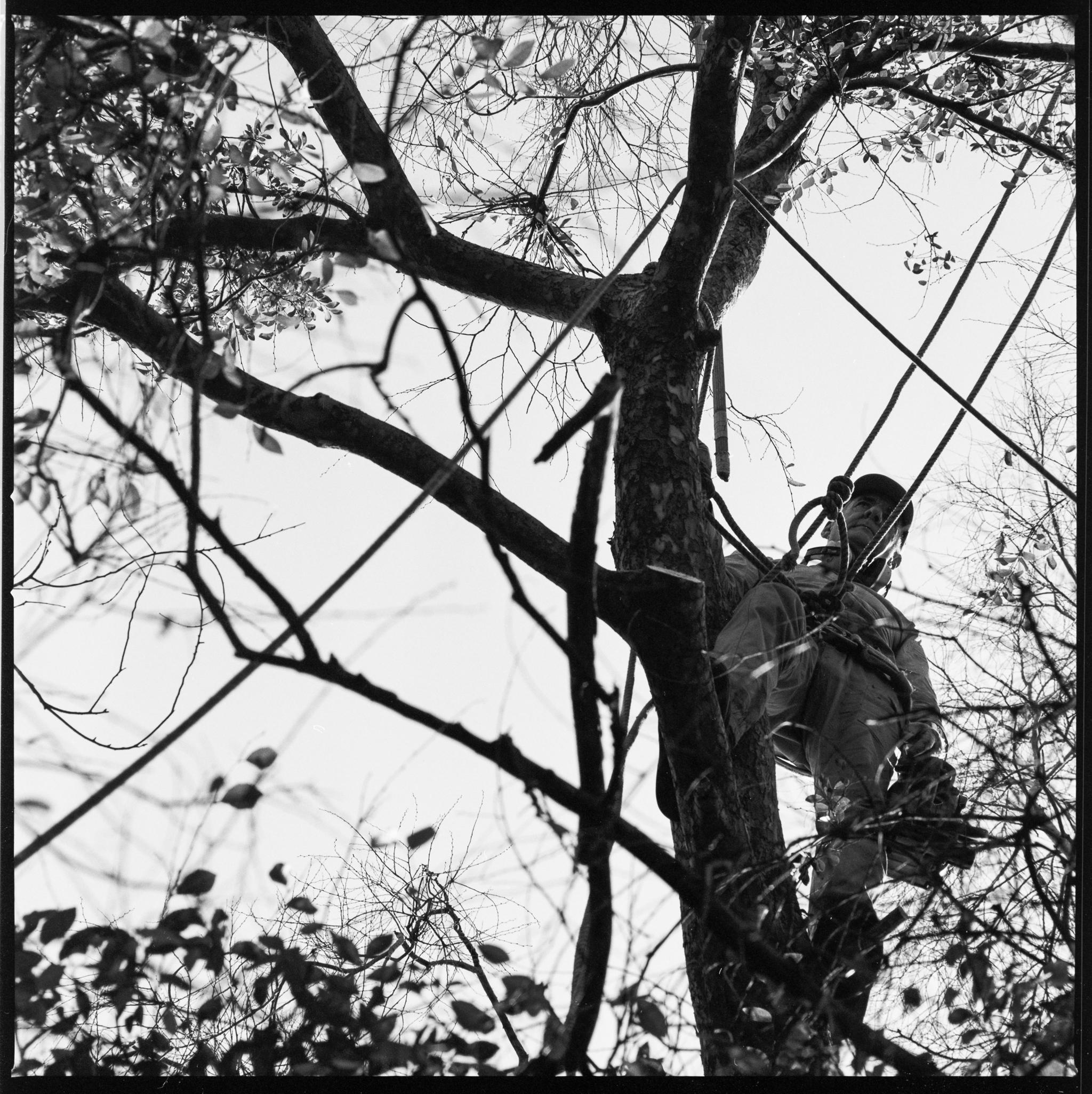098-IlfordFP4-100-500CM-TreeTrimming-004.jpg