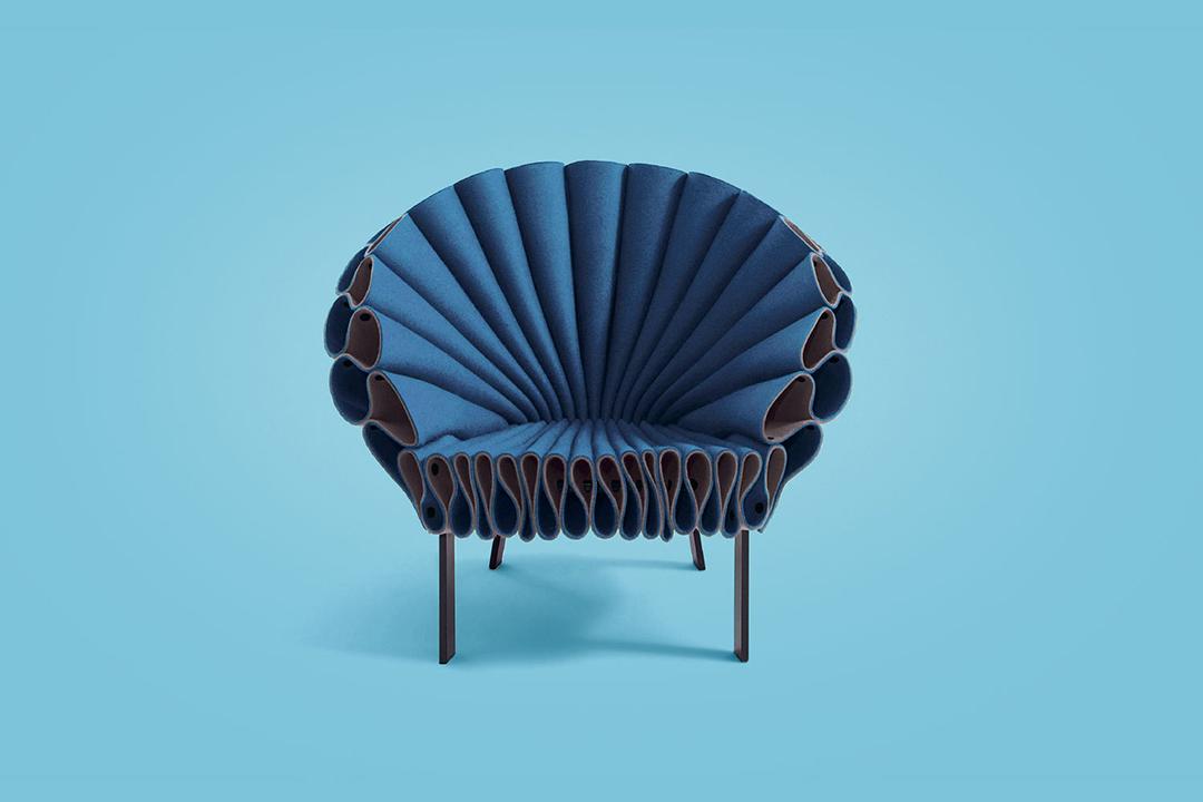 Evan's  Peacock chair