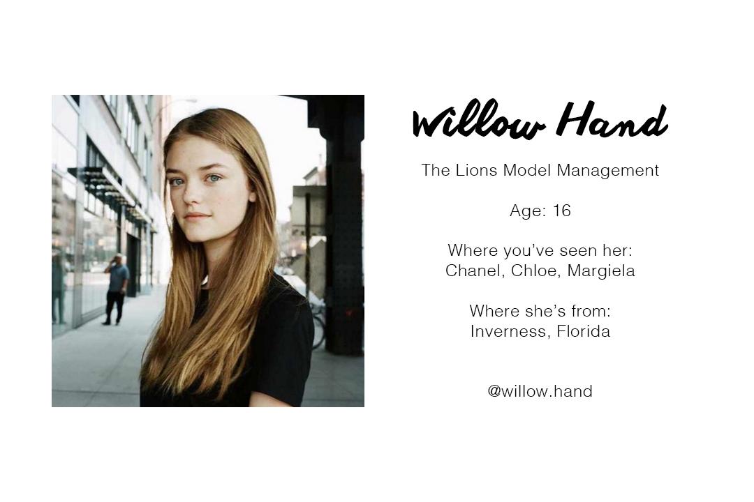 willowhand.jpg