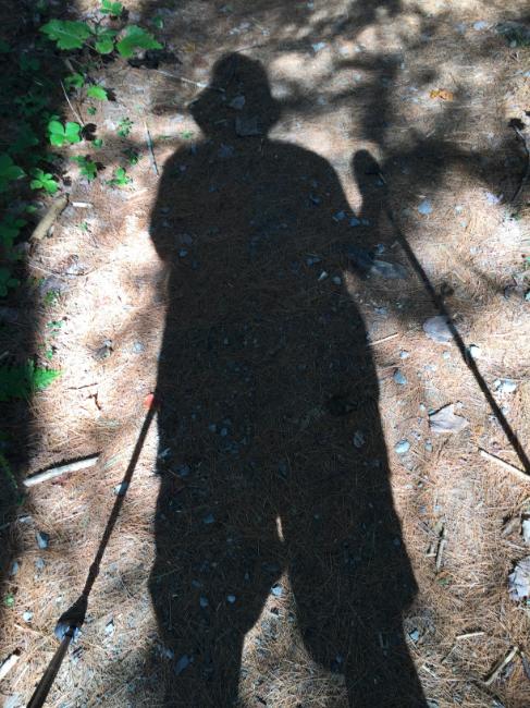 Self-portrait with sticks