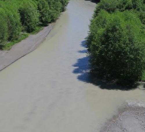 Toutle River