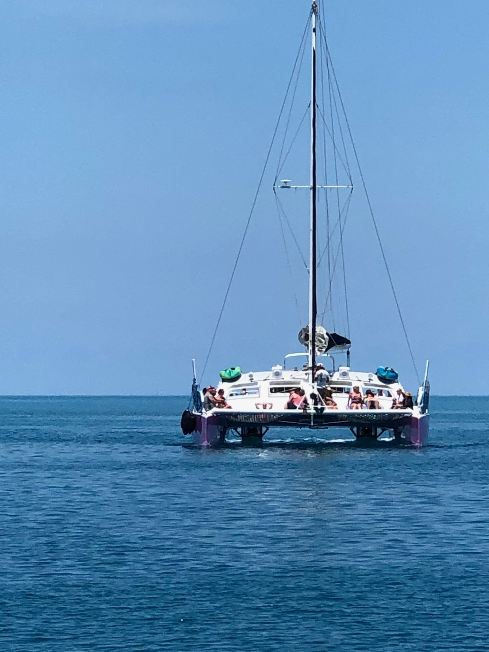 V and i went out reef snorkeling on a catamaran like this one, called AristoCat. High point of the trip for me!