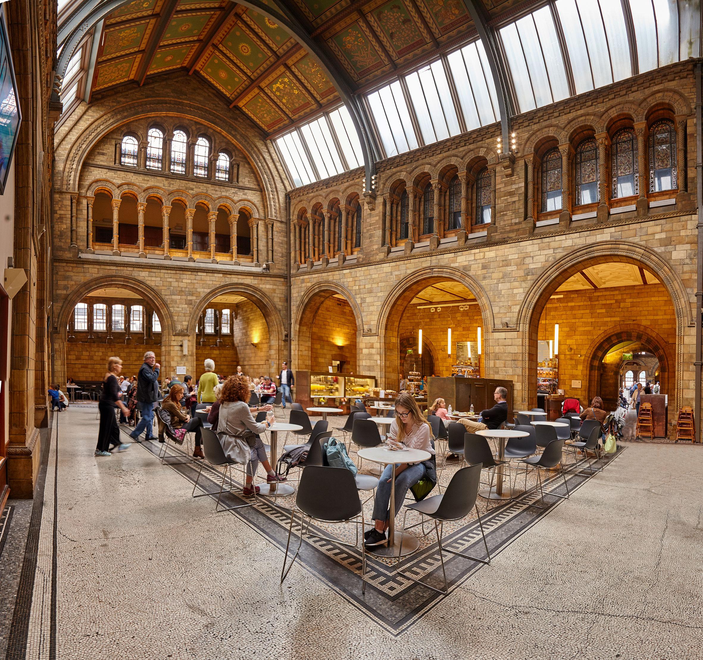 Musée d'histoire Naturelle de Londres I