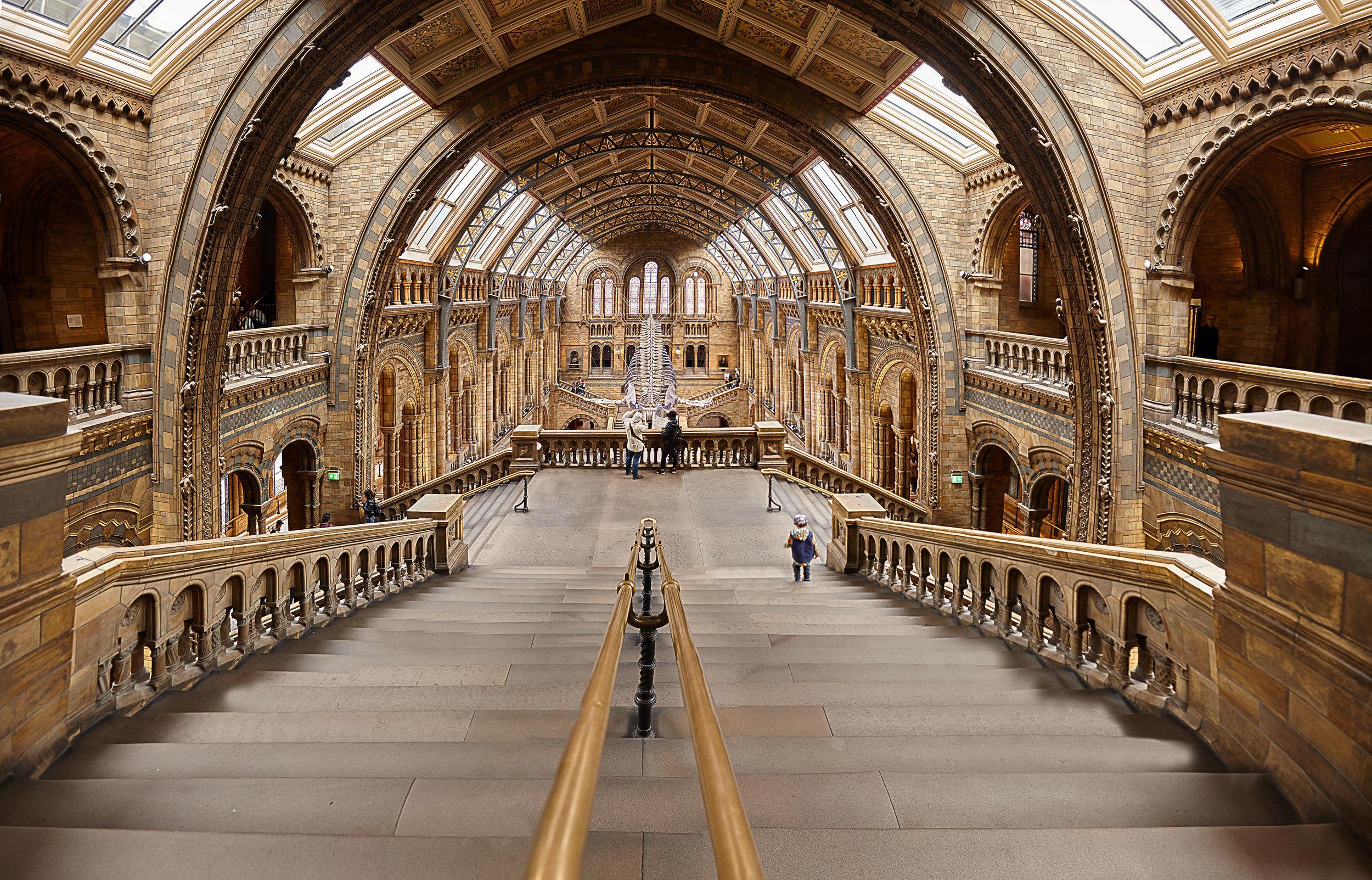 Musée d'histoire Naturelle de Londres II