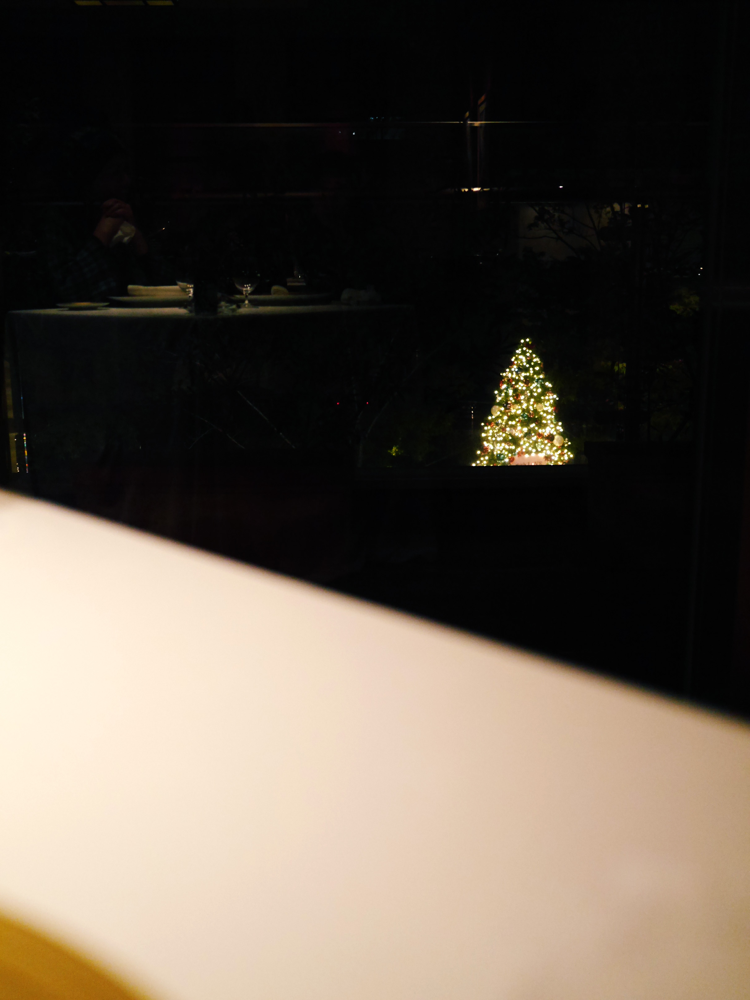 Photo Dec 05, 8 02 37 PM.jpg