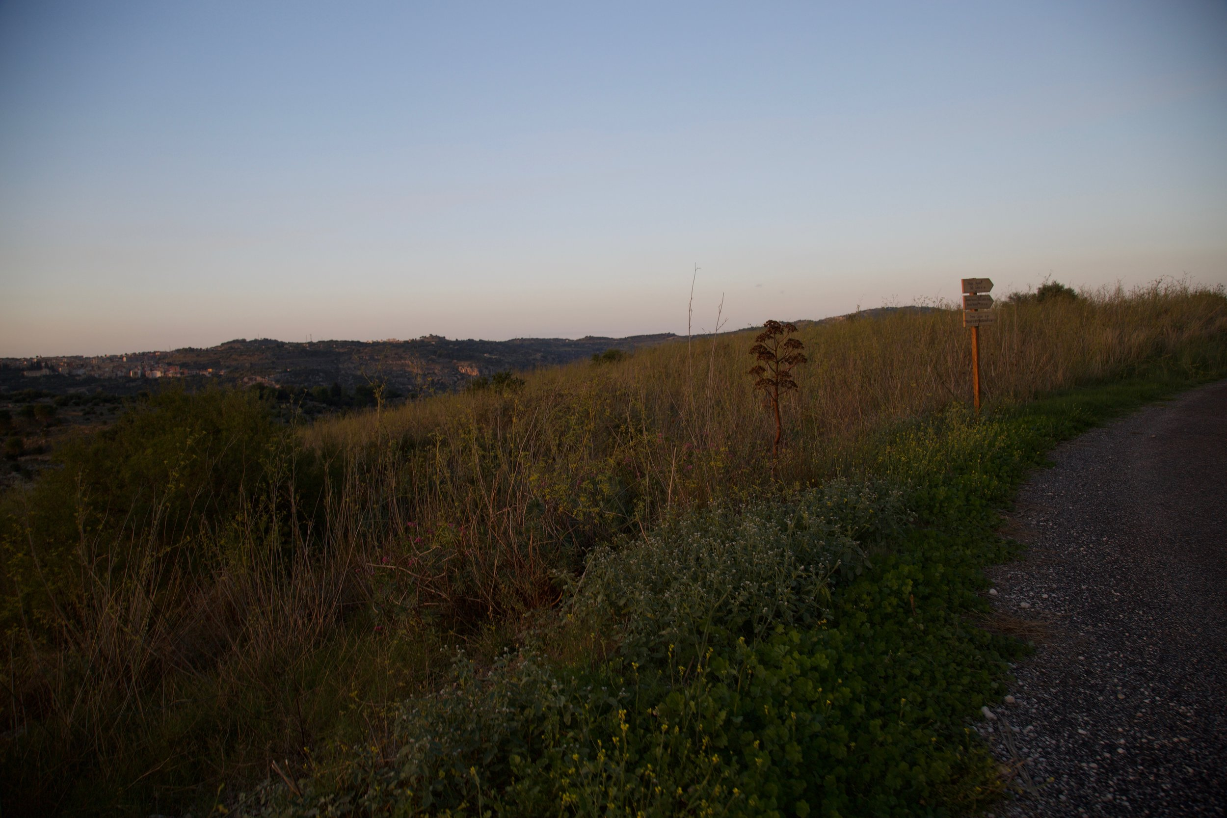 The fields near Ferla, Sicily where the wild fennel grows.