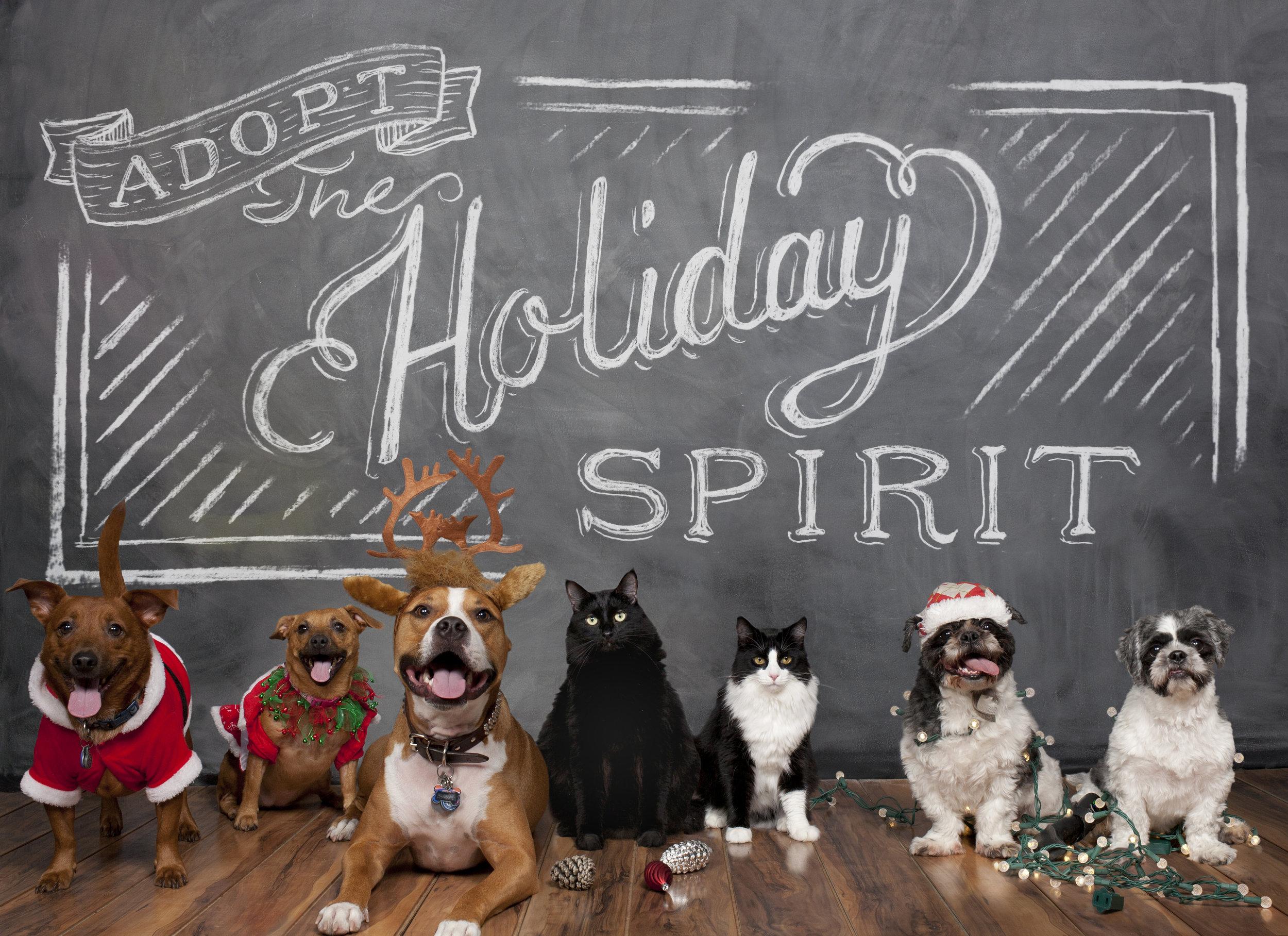 Adopt the Holiday Spirit.jpg