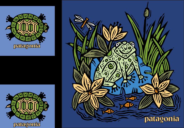 Patagonia_turtle.png