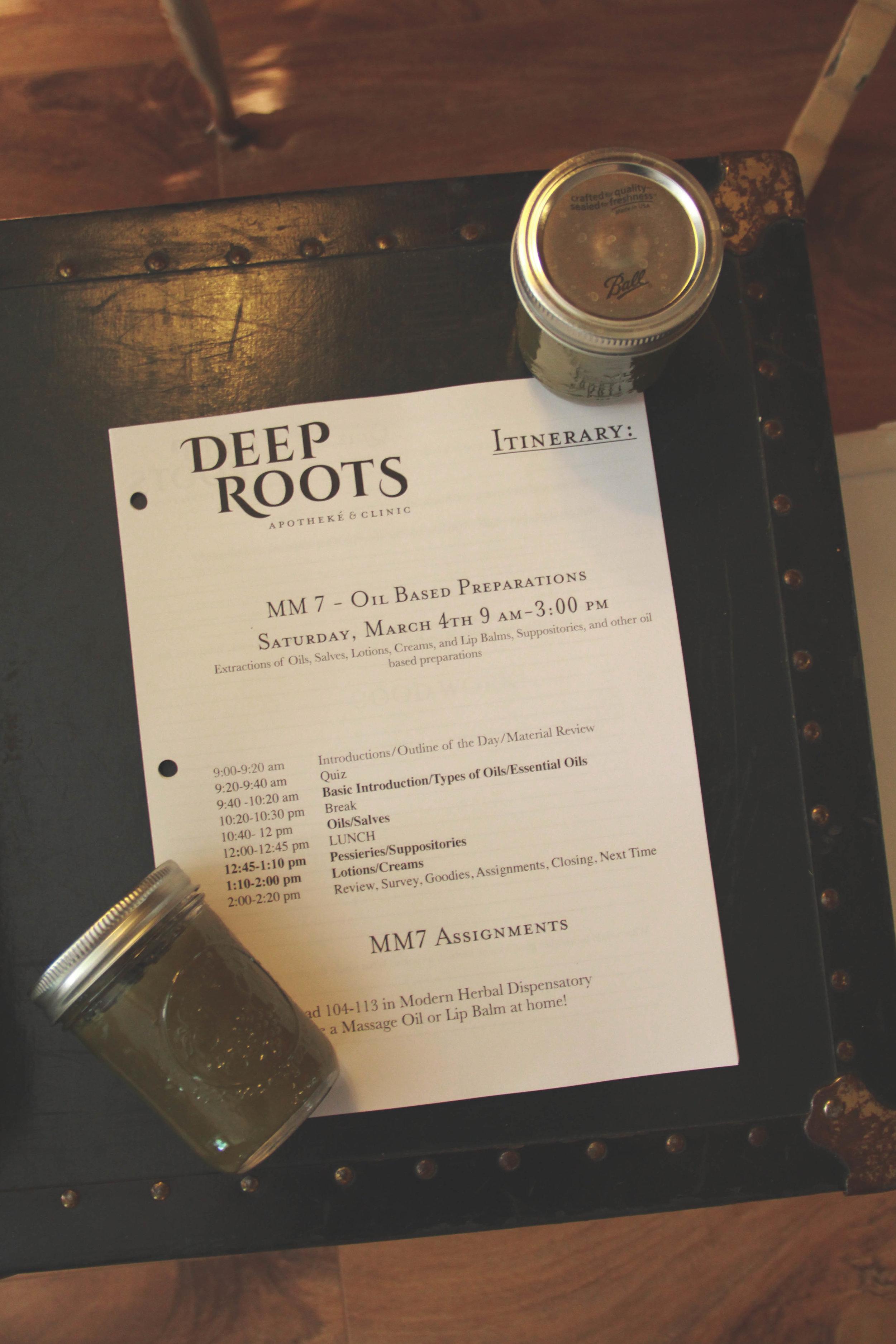 DeepRoots-2.jpg