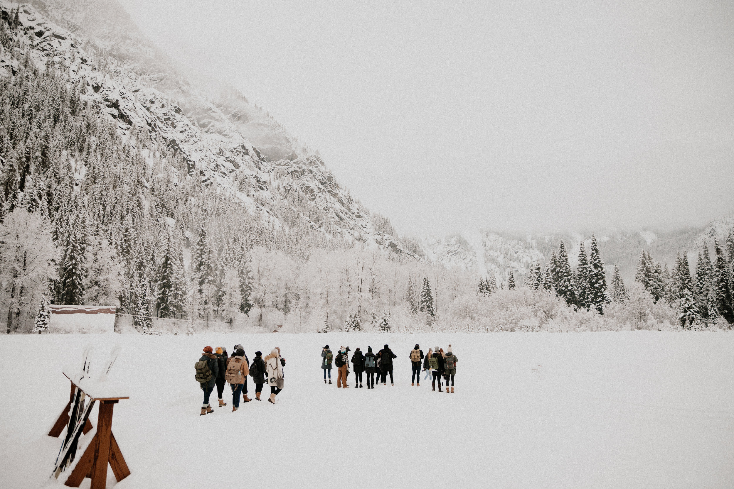 AlpineNorthwest-21.jpeg