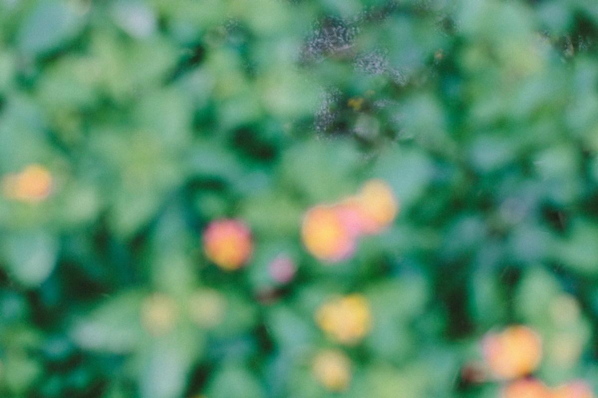 草山玉溪戶外婚禮,max fine art 陽明山戶外證婚,戶外婚禮證婚推薦,天使分享咖啡廳-0033.jpg