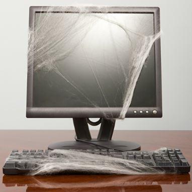 cobweb..JPG