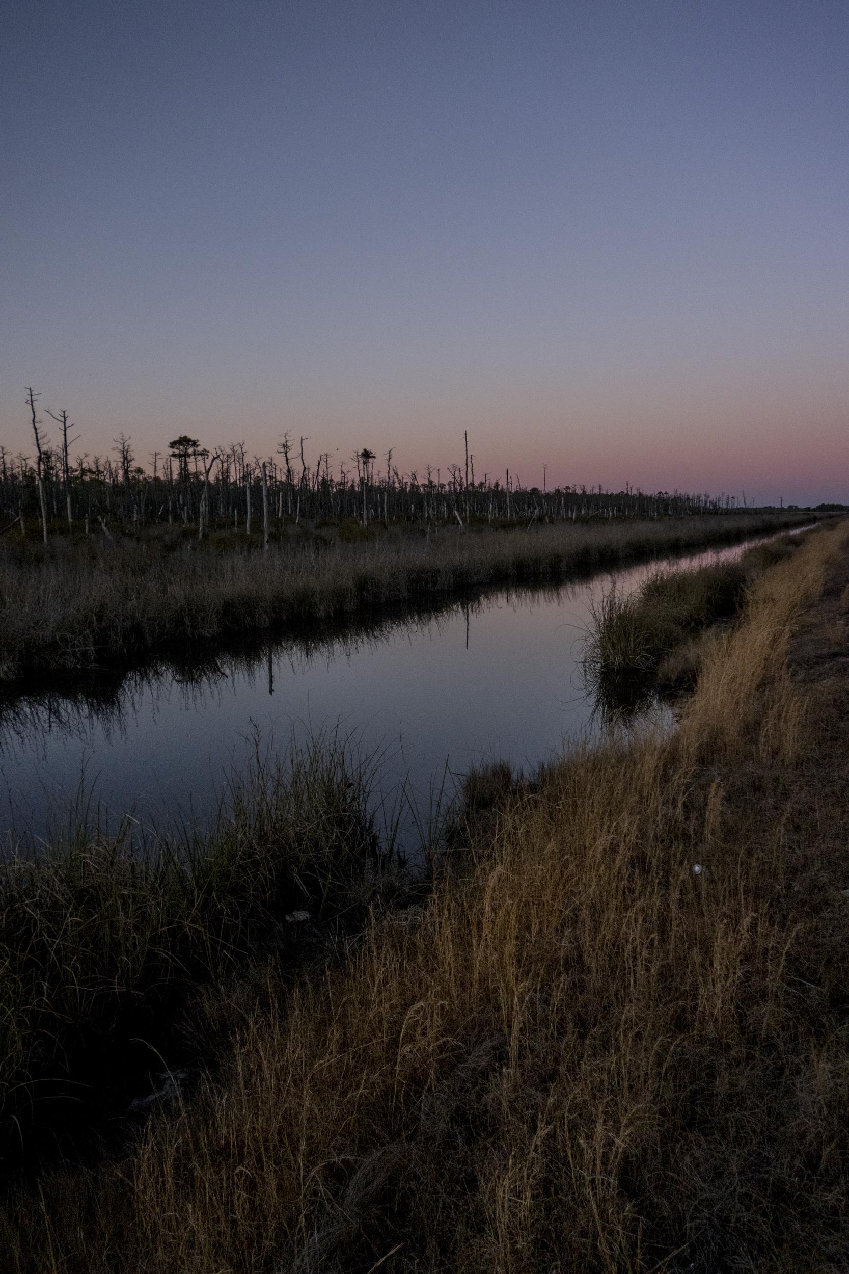 Alligator River Refuge