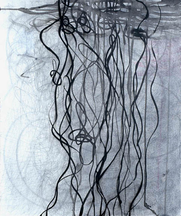 """Rope Lines  , 24""""x 20"""", ink, graphite on paper on wood, 2007"""