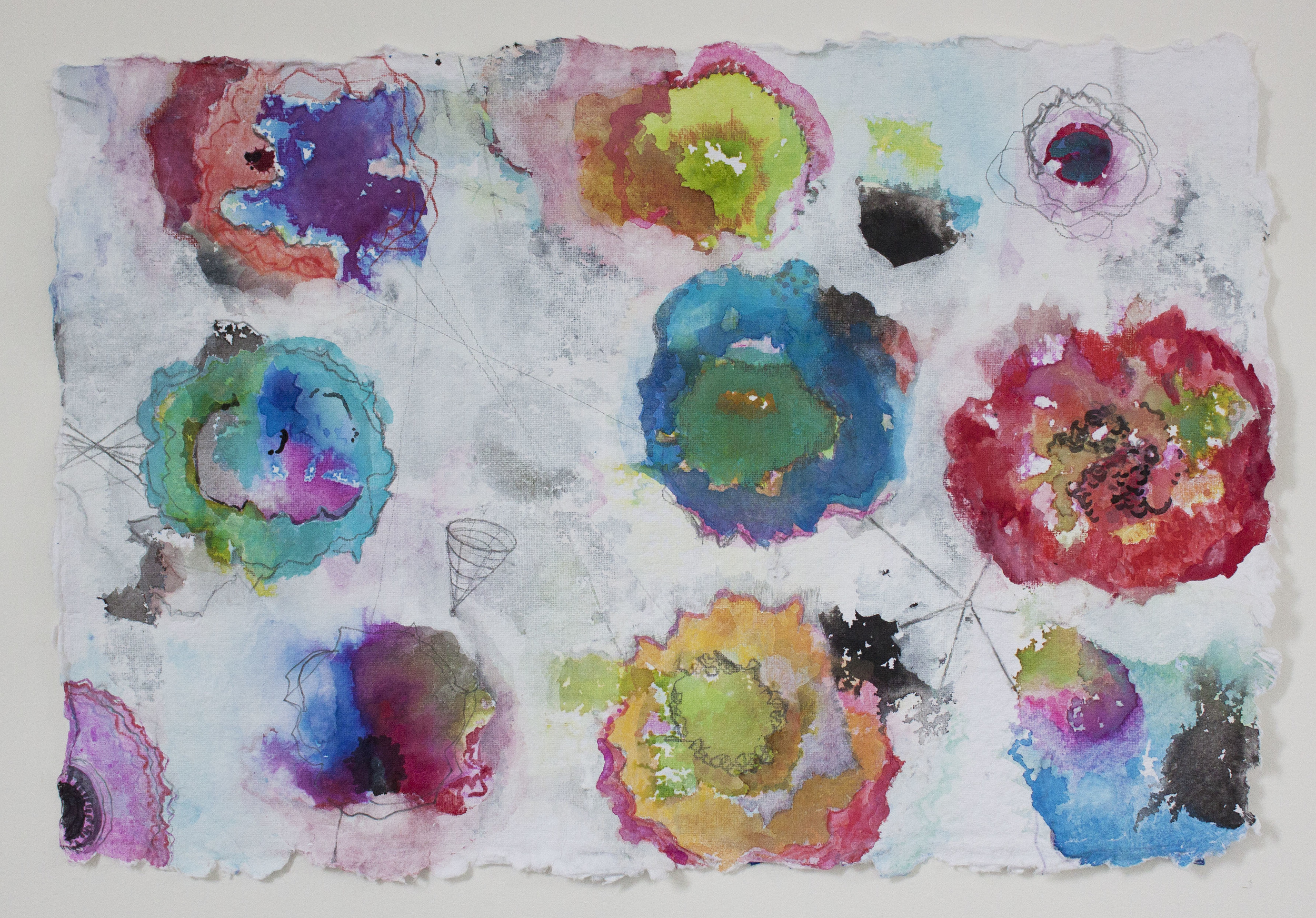"Poppies 3,  12""x 18"", gouache, ink, graphite on handmade paper, 2013"
