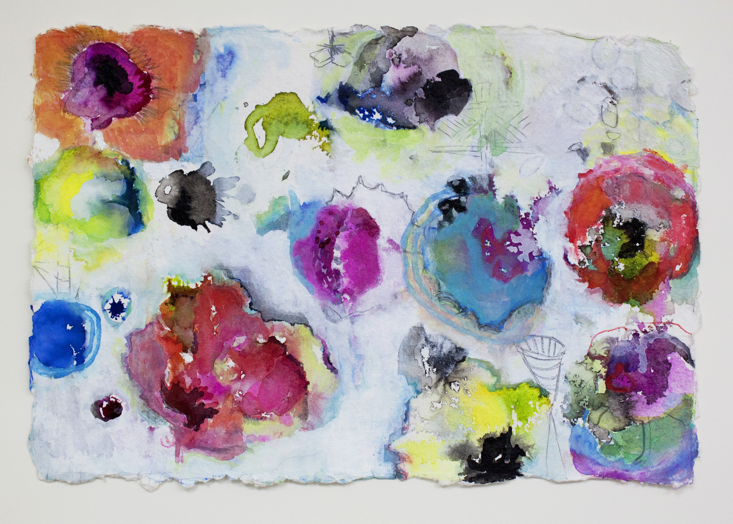 "Poppies 2,  12""x 18"", gouache, ink graphite on handmade paper, 2013"