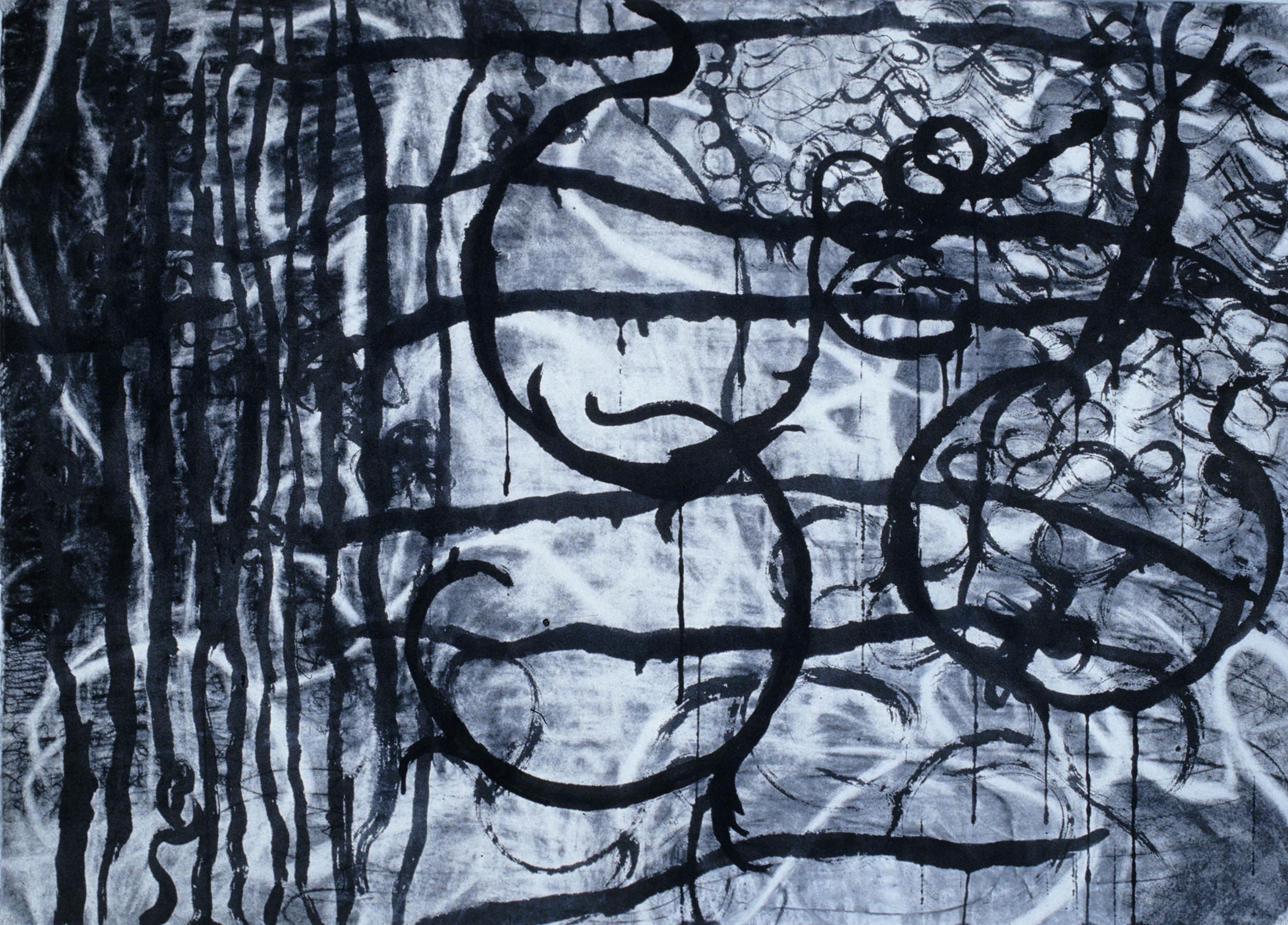 "Fleur Arc,  29.5""x 41.5"", charcoal, ink, 2006"