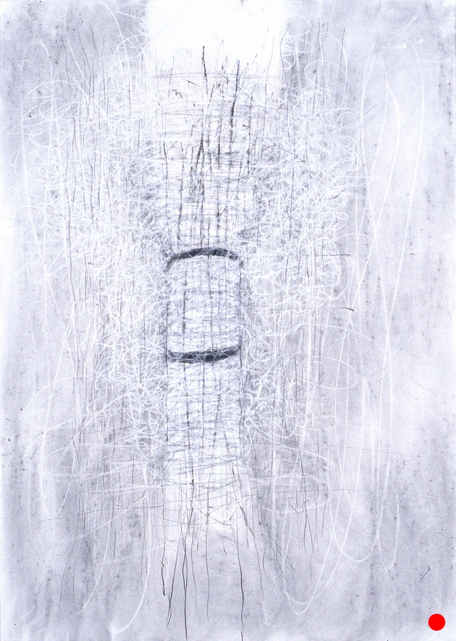 """40.5""""x 29.5"""", charcoal, graphite on paper, 2005  SOLD"""