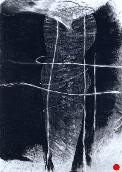 """Captivity,   40.5""""x 29.5"""", charcoal, graphite on paper, 2005  SOLD"""