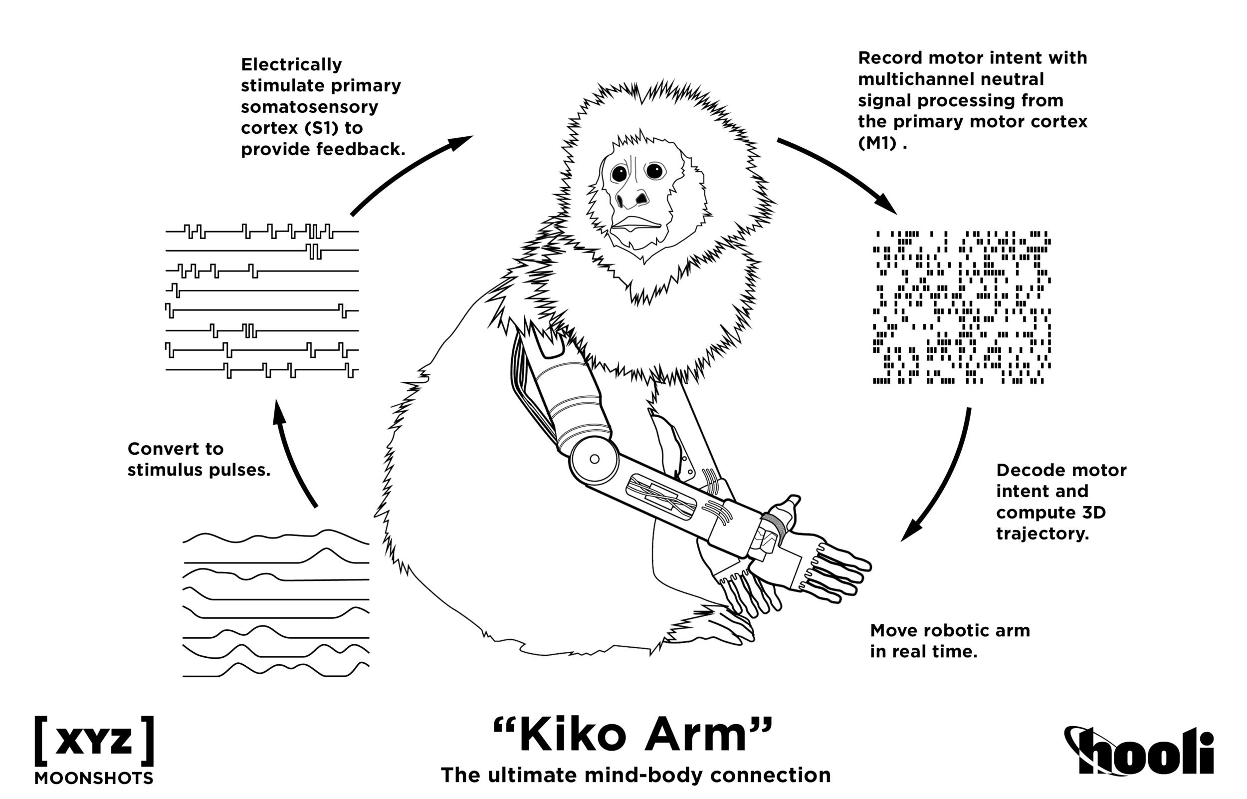Kikoarm_Moonshot (1).png