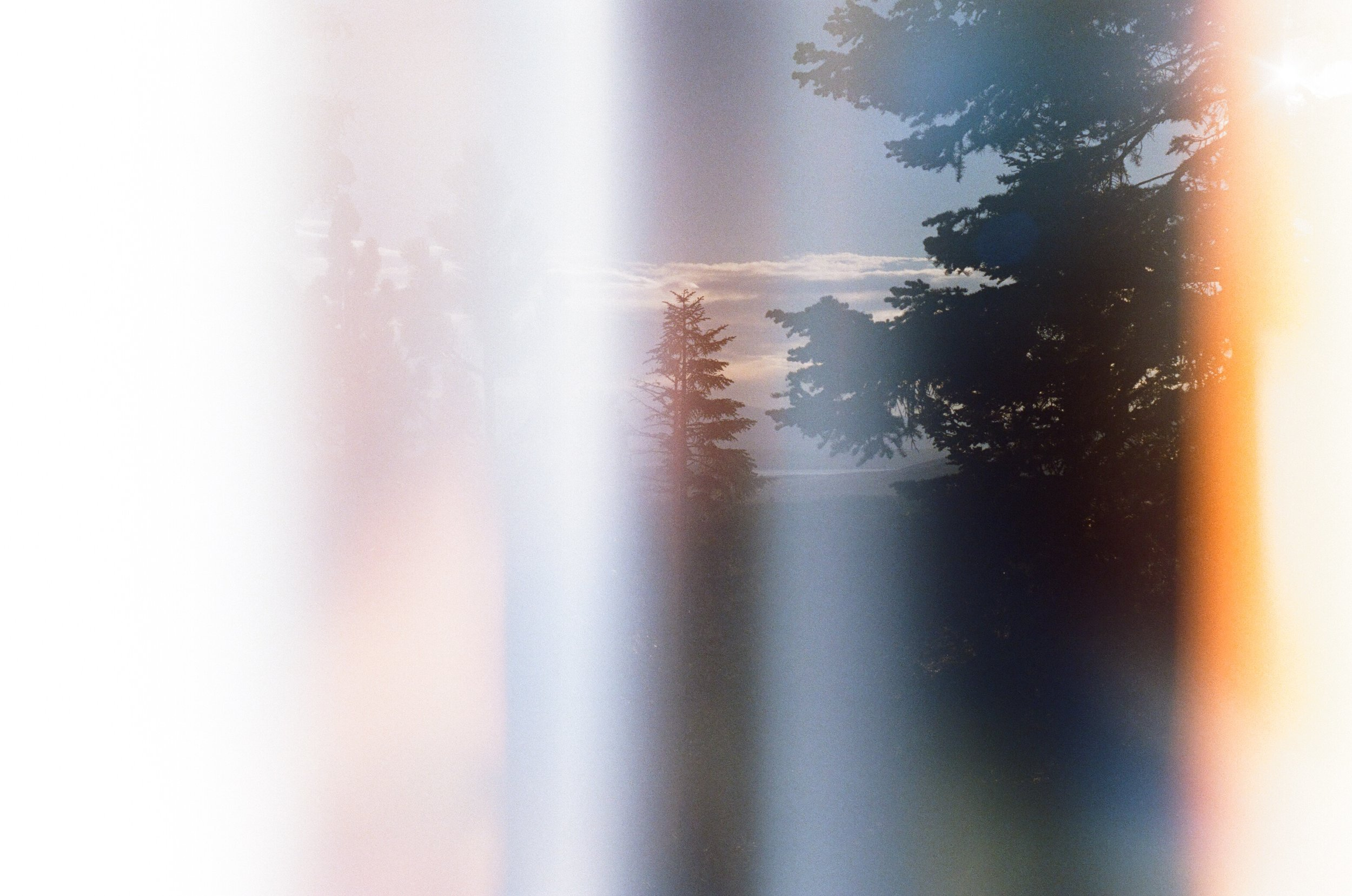 84660001.jpg