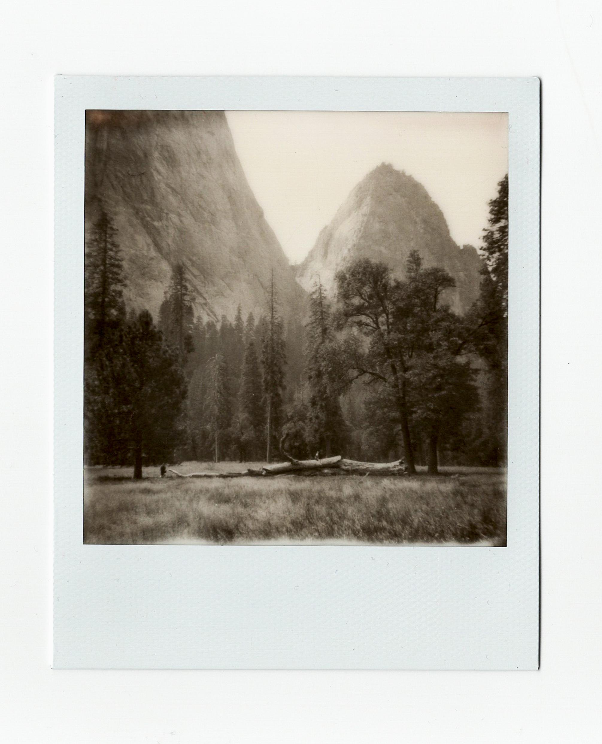 Yosemite17 (7 of 16).jpg