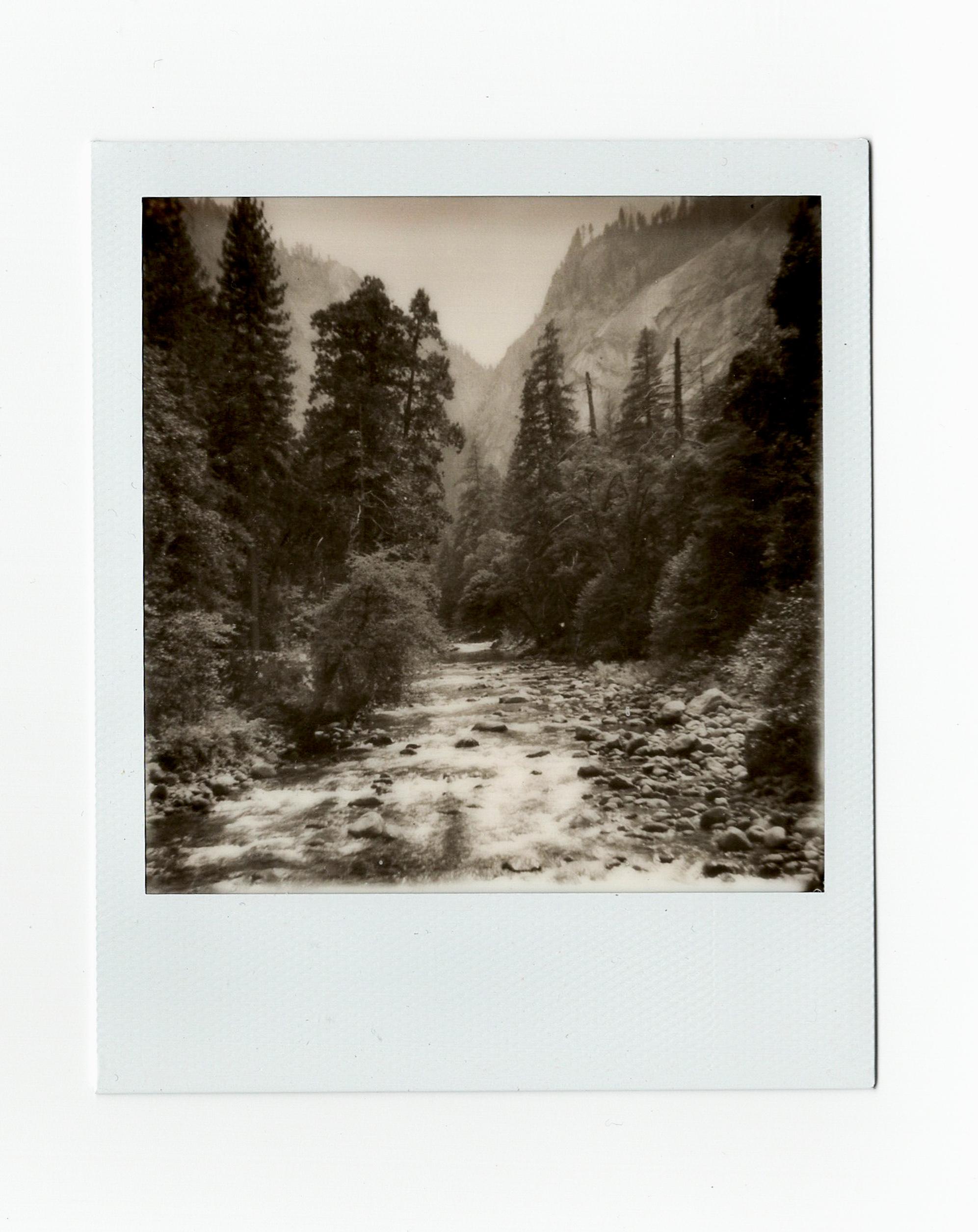 Yosemite17 (6 of 16).jpg