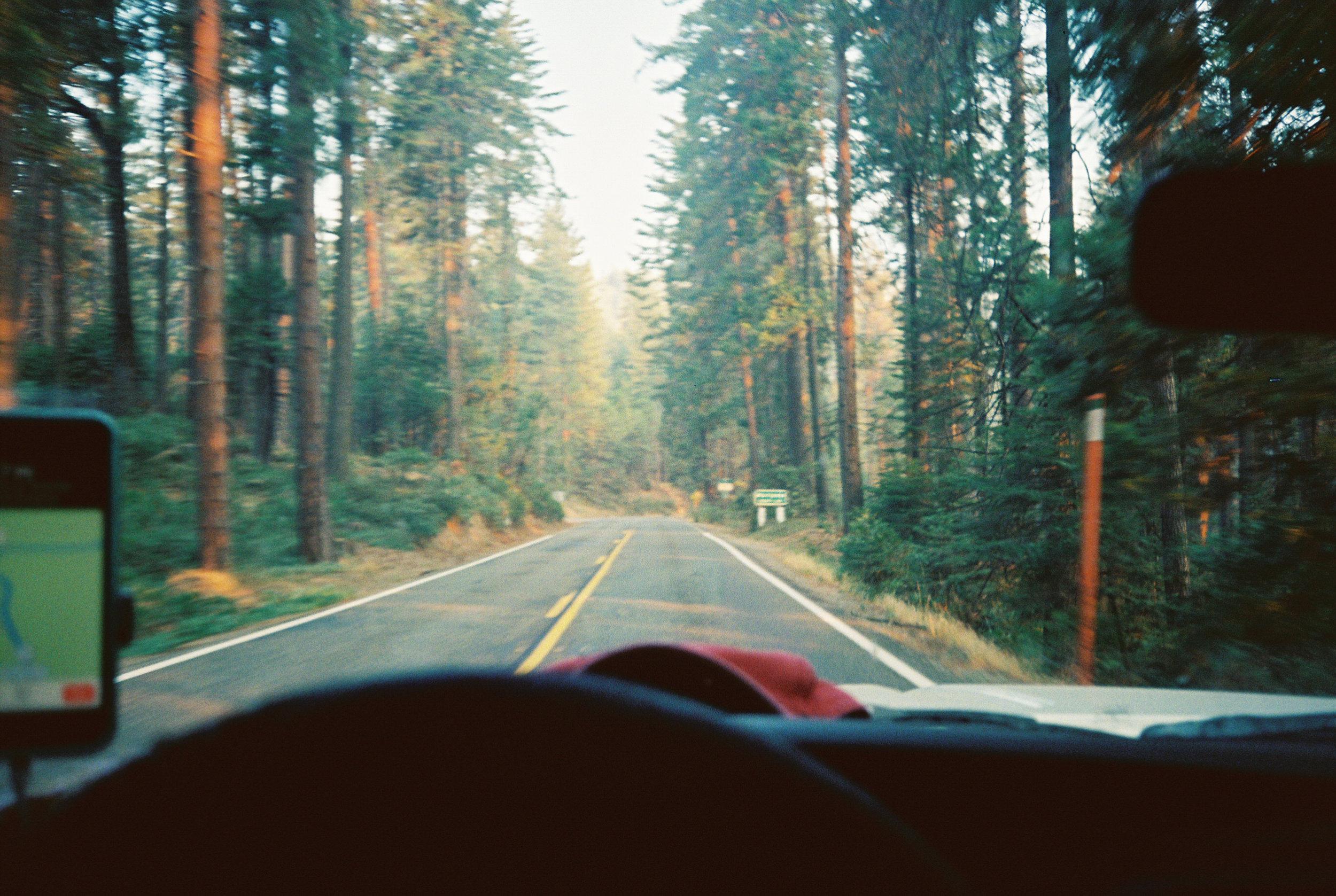 Yosemite -FILM LS (1 of 1).jpg
