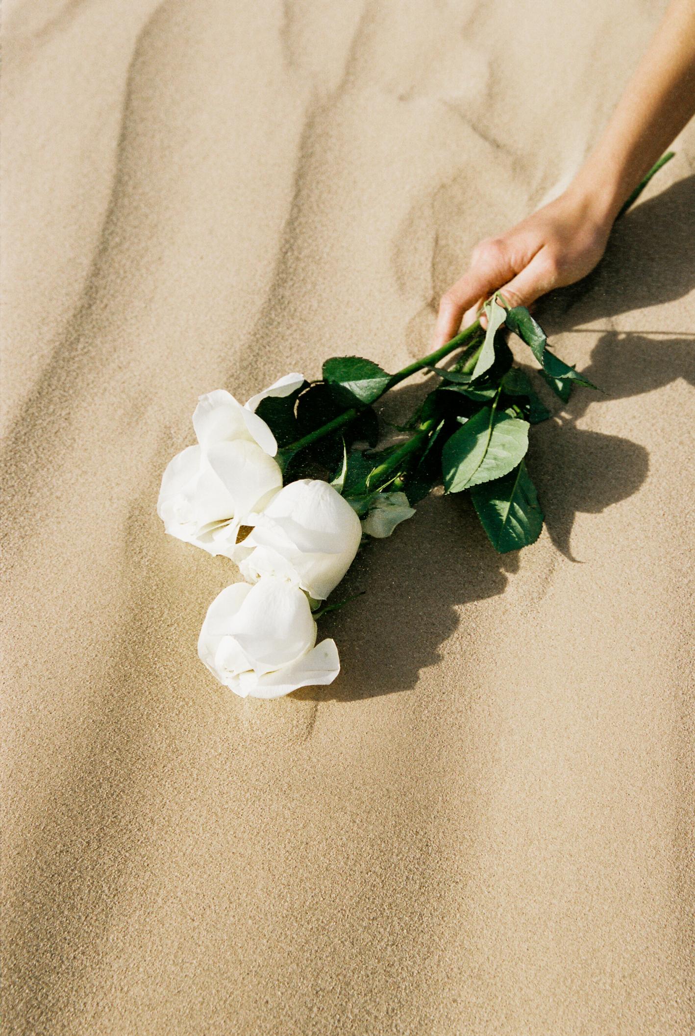 DesertFilm2 (65 of 101).jpg