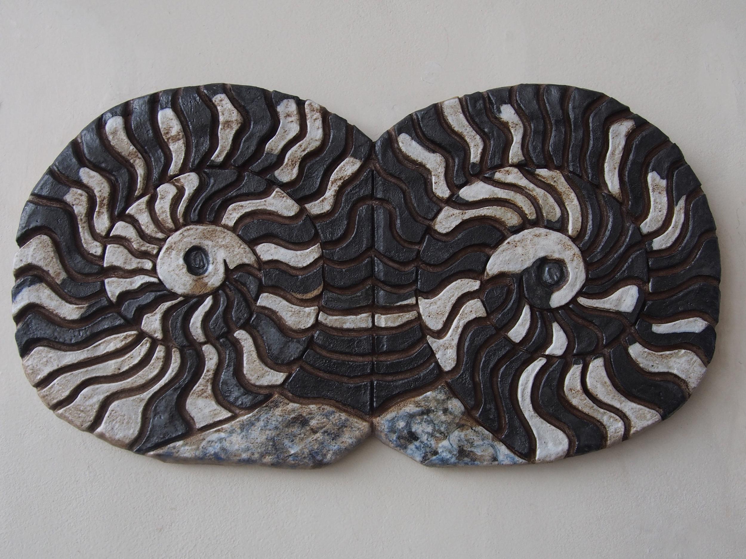 Chambered Ammonite