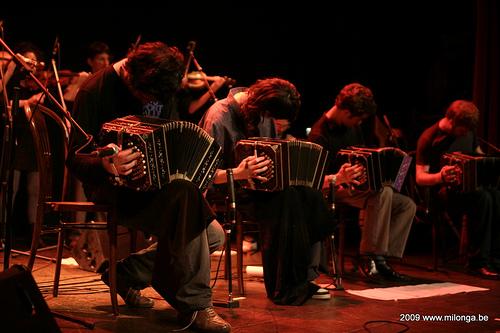 bandoneon players - tango