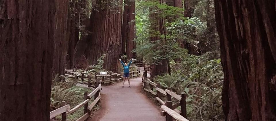 Walking through Muir Woods, California