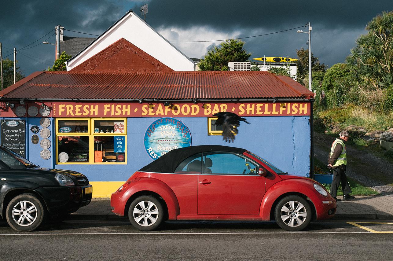 100814_Freshfish,seafood,Shellfish_AndrewFosterPhoto.jpg