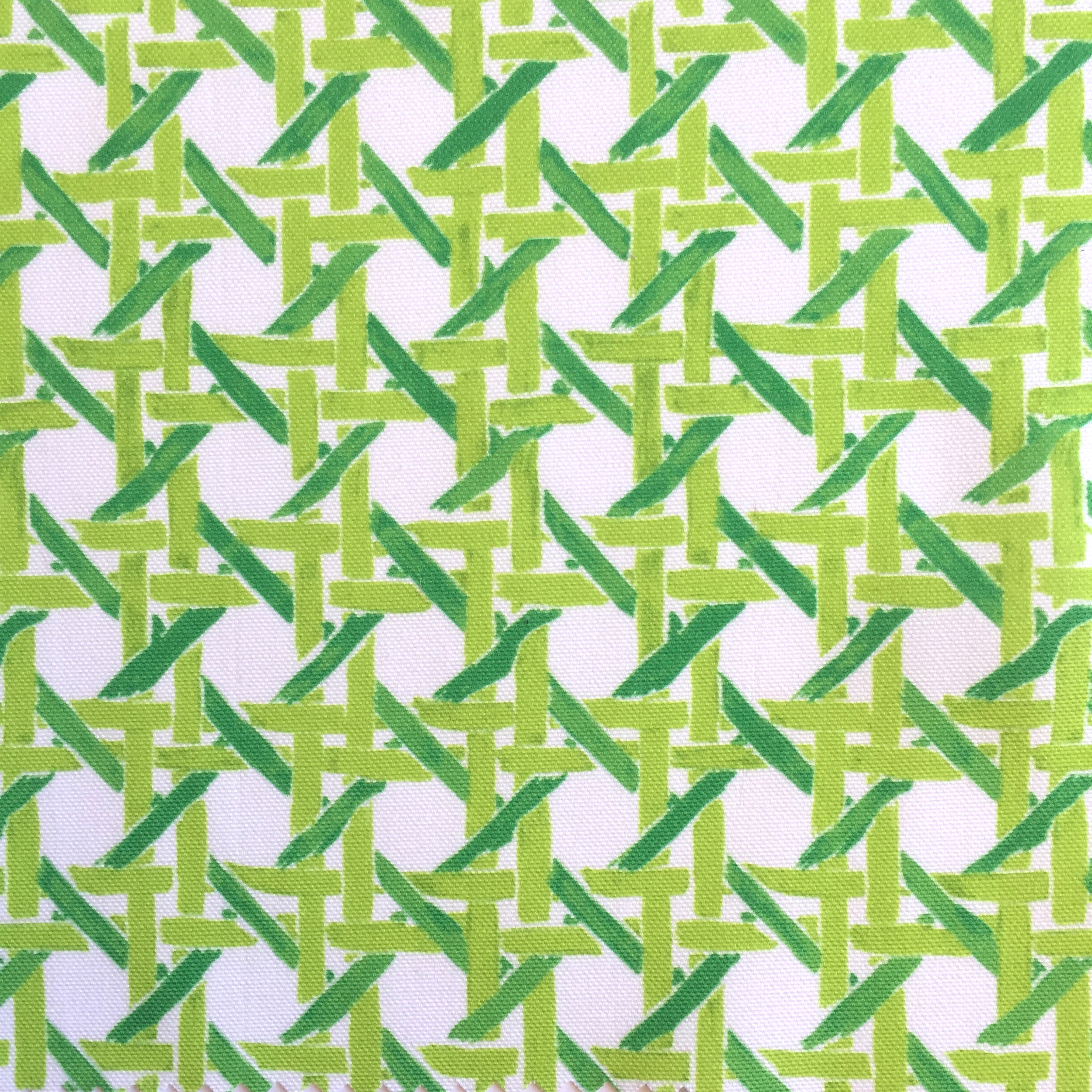 Cane Print in Gimlet  PALM SPRINGS COLLECTION