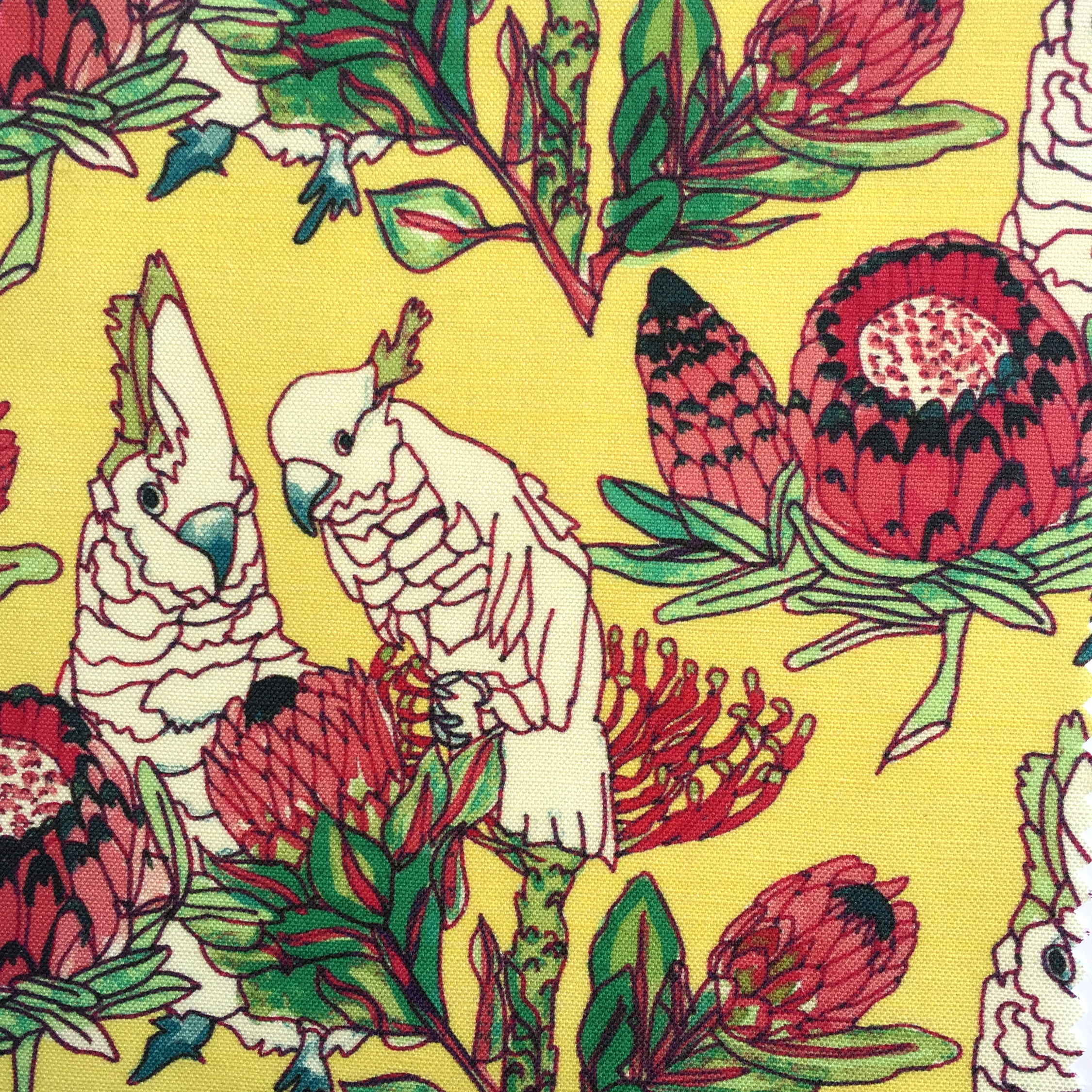 Parrots and Proteas in Lemon  PALM SPRINGS COLLECTION